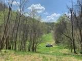 1039 Massey Hollow Ln - Photo 29