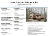 1043 Hogans Branch Rd - Photo 48