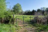 10739 Blue Springs Hollow Rd - Photo 2