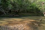 10739 Blue Springs Hollow Rd - Photo 21