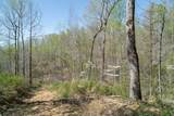 10739 Blue Springs Hollow Rd - Photo 47