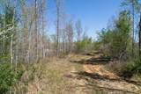 10739 Blue Springs Hollow Rd - Photo 49