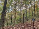 0 Neelys Creek Rd - Photo 13