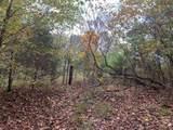 0 Neelys Creek Rd - Photo 6