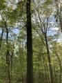 119 Blue Creek Ln - Photo 2