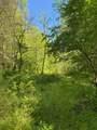 119 Blue Creek Ln - Photo 17