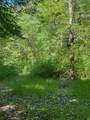 119 Blue Creek Ln - Photo 18