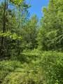 119 Blue Creek Ln - Photo 19