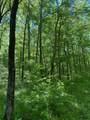 119 Blue Creek Ln - Photo 21