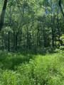 119 Blue Creek Ln - Photo 23
