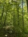 119 Blue Creek Ln - Photo 28