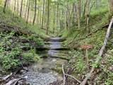 0 Wet Mill Creek Rd - Photo 3