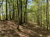 0 Wet Mill Creek Rd - Photo 4