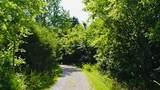 2925 Swindell Hollow Rd - Photo 16