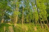 567 Ben Green Rd - Photo 14