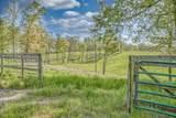 887 Ray Cemetery Road - Photo 13