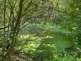 233 Preston Ridge Rd/Wet Prong - Photo 3