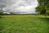 201 Buckner Farm Ln - Photo 17