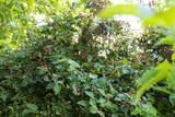 4815 Douthitt Ln - Photo 45