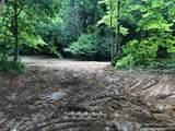 0 Bucksnort Road - Photo 2