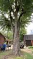 226 Old Pierce Rd - Photo 36