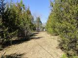 0 Ivey Point Rd - Photo 21