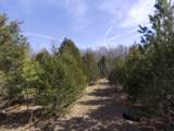 0 Ivey Point Rd - Photo 38