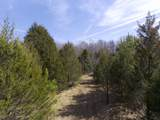 0 Ivey Point Rd - Photo 39