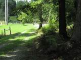 263 Willow Grove Church Rd - Photo 34