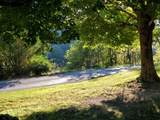 1971 Short Creek Rd - Photo 13