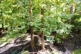 4972 Tulip Grove Ln - Photo 21