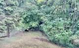 107 Treetop Ct - Photo 43