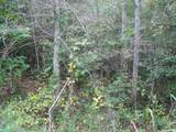 1725 Old Highway 13 - Photo 11