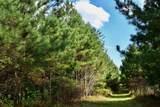 169 Forest Ridge Road - Photo 41