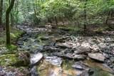 75 Deer Lick Trail - Photo 45