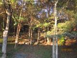 343 Campbell Hollow Rd - Photo 16
