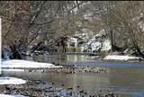 901 Britton Springs Rd - Photo 23