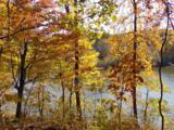 0 Pine Lake Rd - Photo 3