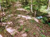 0 Deer Run Rd Lot 146 - Photo 11