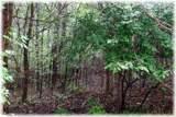 8694 Poplar Creek Rd - Photo 5