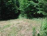7 .53 Ac. Big Piney Loop - Photo 14