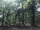 1034 Holly Tree Gap Rd - Photo 2