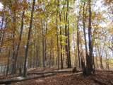 0 Deerview Ln - Photo 3