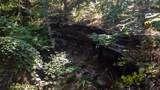 4595 S Pittsburg Mountain Rd - Photo 30