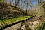 0 Dog Creek Rd - Photo 19