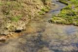 0 Dog Creek Rd - Photo 22