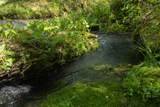 7262 Sinking Creek Rd - Photo 11