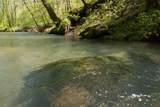 7262 Sinking Creek Rd - Photo 18