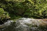 7262 Sinking Creek Rd - Photo 26