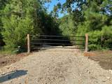 0 Buena Vista Road - Photo 2